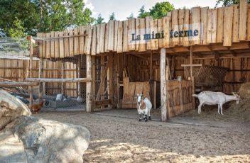 Partagez-de-tendres-moments-avec-les-animaux-de-la-mini-ferme-au-camping-La-Grand'-Métairie